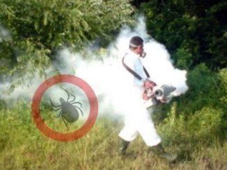 komarci-unistavanje