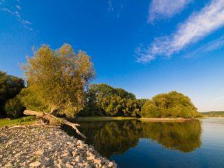 Medjunarodni dan Dunava upoznaj_apatin2