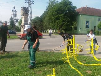 Radna akcija SNS na ulepšavanju Karavukova
