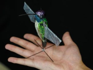 dron-kolibri